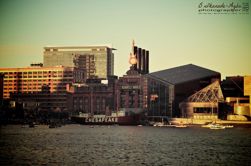 photoblog image Chesapeake