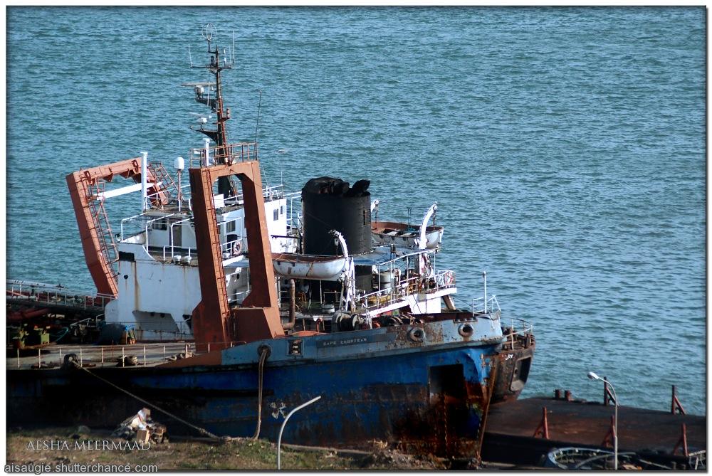 photoblog image Sea Debris