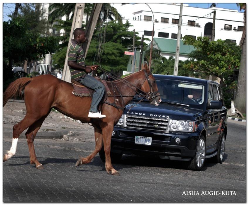 photoblog image Horse Power