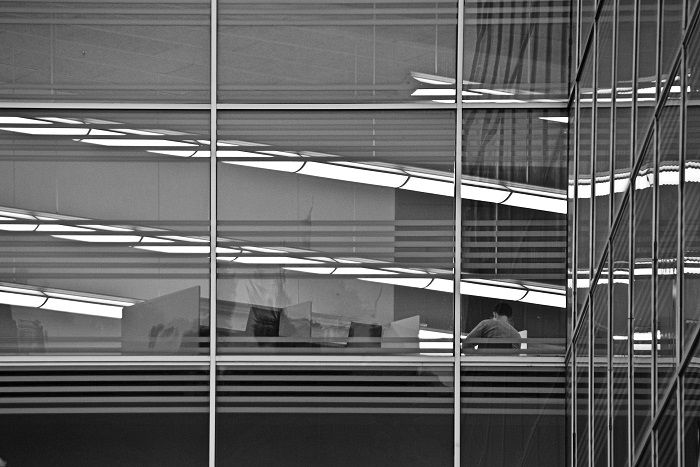 photoblog image Entre lineas