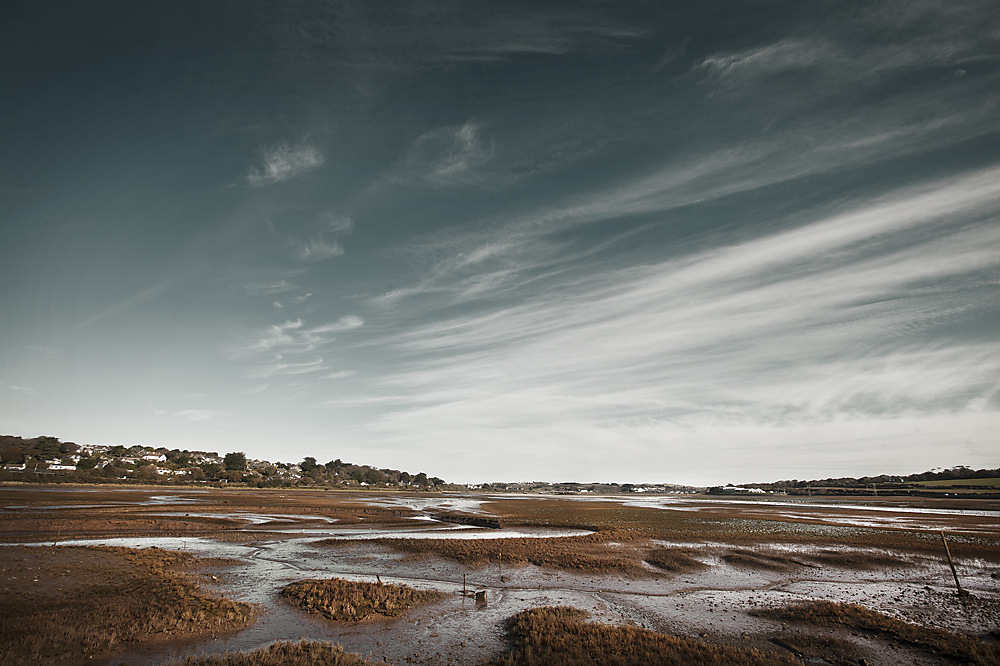 photoblog image Marsh from Hayle.