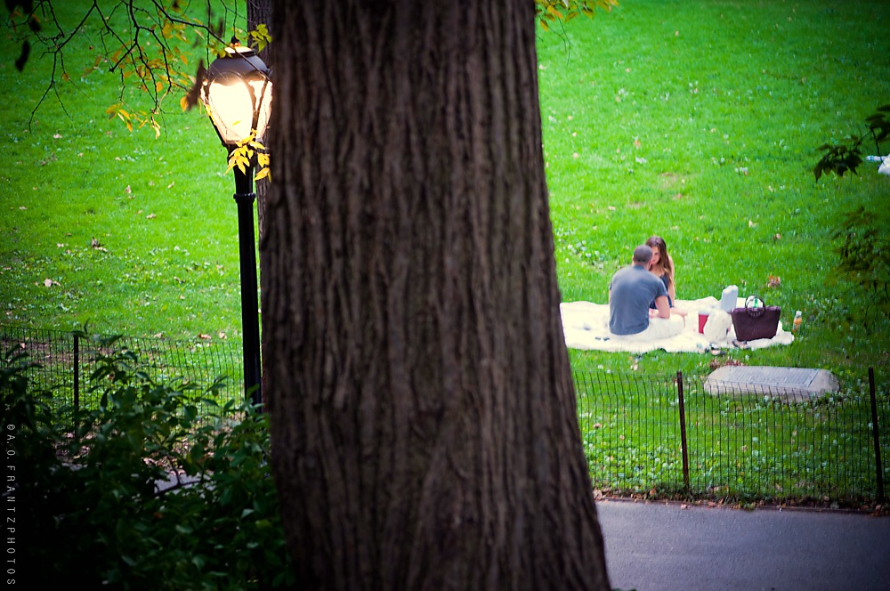 photoblog image Central Park is For Lovers II