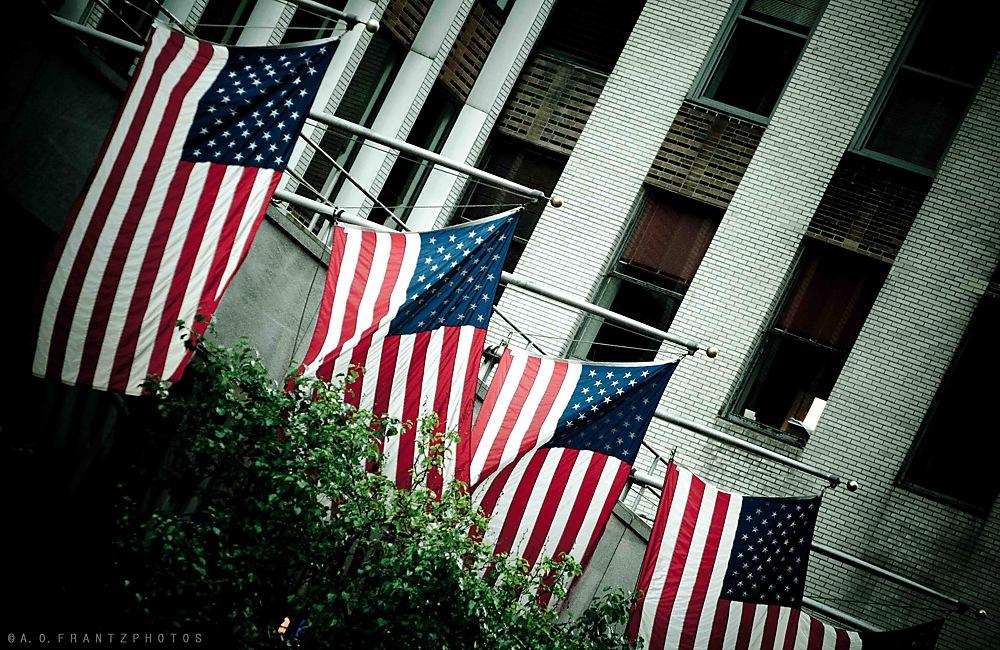 photoblog image Flag II
