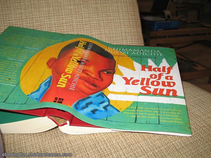 photoblog image Half of a Yellow Sun