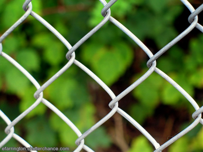 photoblog image Crossed Wires