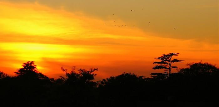 photoblog image Sunset