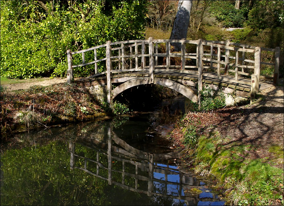 photoblog image Exbury Gardens