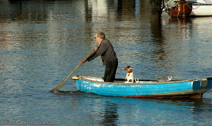 photoblog image One man and his dog