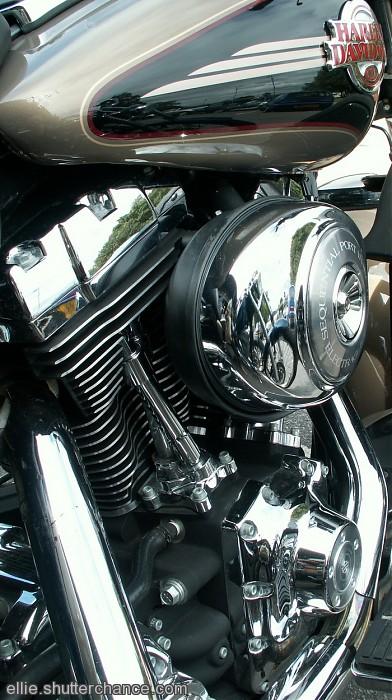 photoblog image Shiny Harley