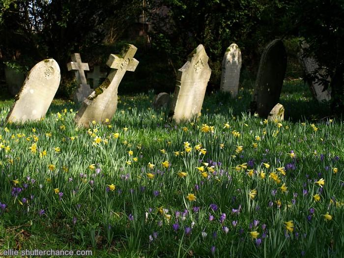 photoblog image St Nicholas Church, Brockenhurst
