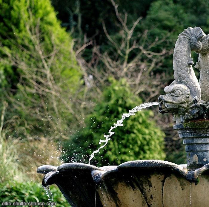 photoblog image Ventnor Fountain