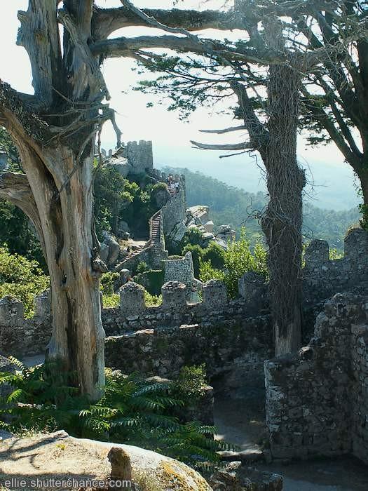 photoblog image Moorish Castle, Sintra