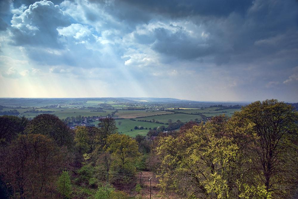 photoblog image Ashridge view