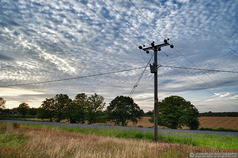 photoblog image As I walked out one summer evening