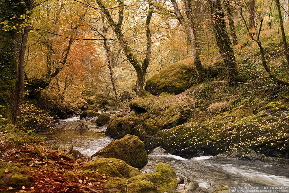 photoblog image Magical Wales.