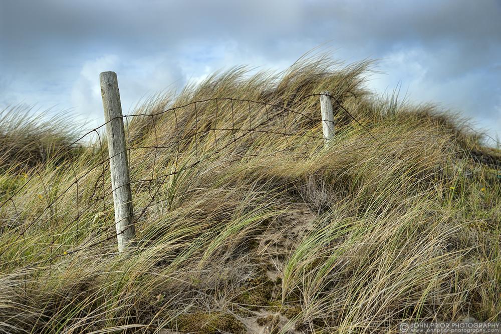 photoblog image Dune wind