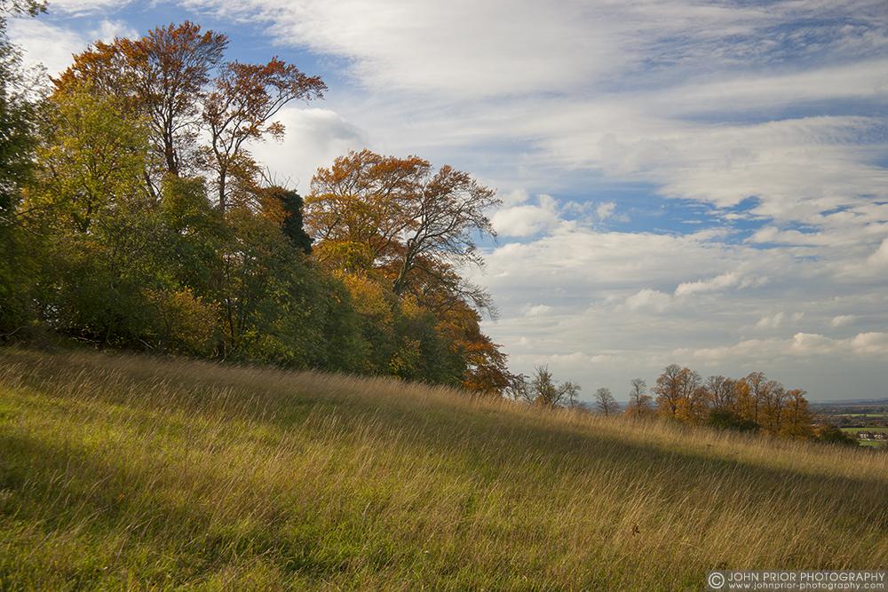 photoblog image Autumn field