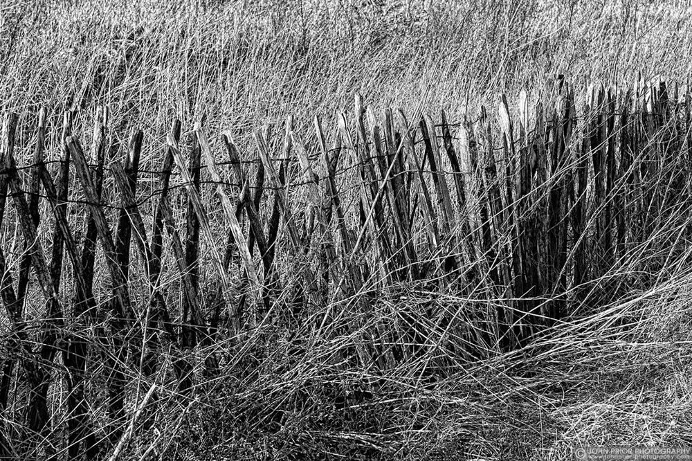 photoblog image Fence