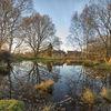 Chorleywood Common I