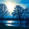 Hambleden water meadows