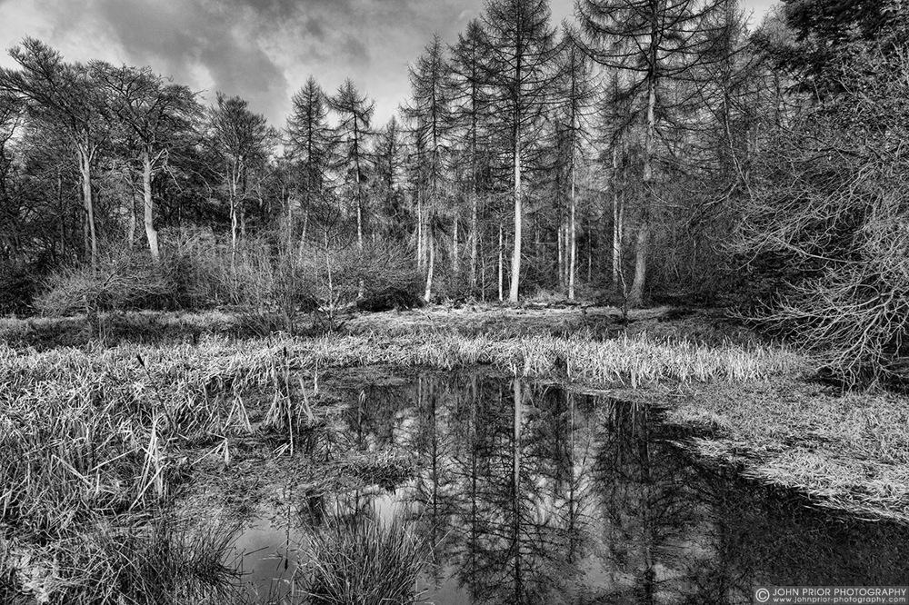 photoblog image The illusion of wilderness...