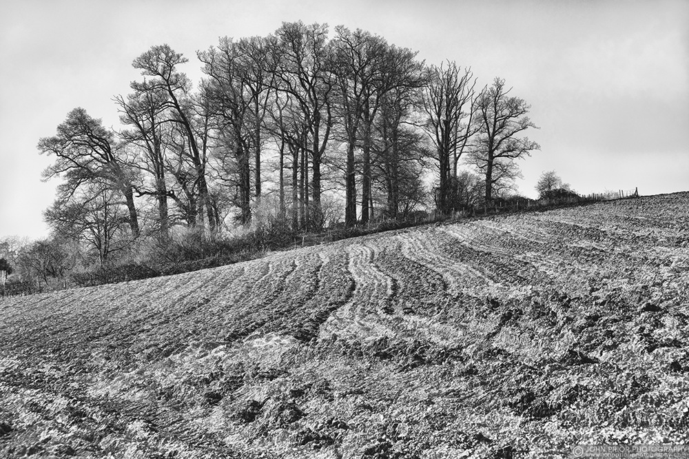 photoblog image Ploughed field.