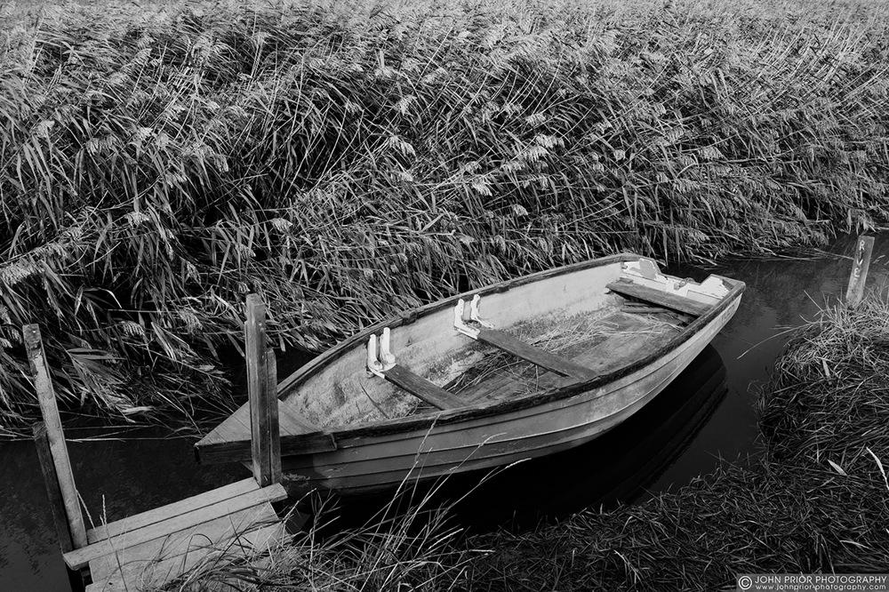 photoblog image Boat and reeds