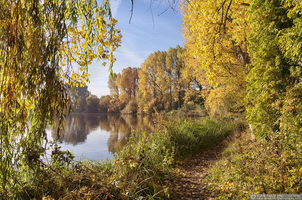 photoblog image Springwell into autumn