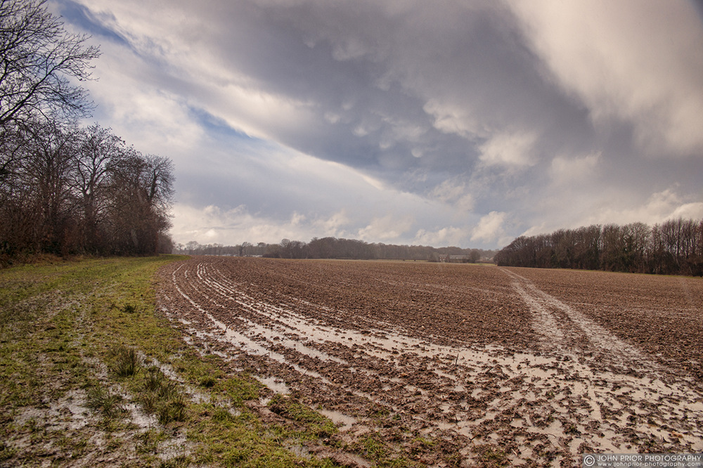photoblog image When it rains
