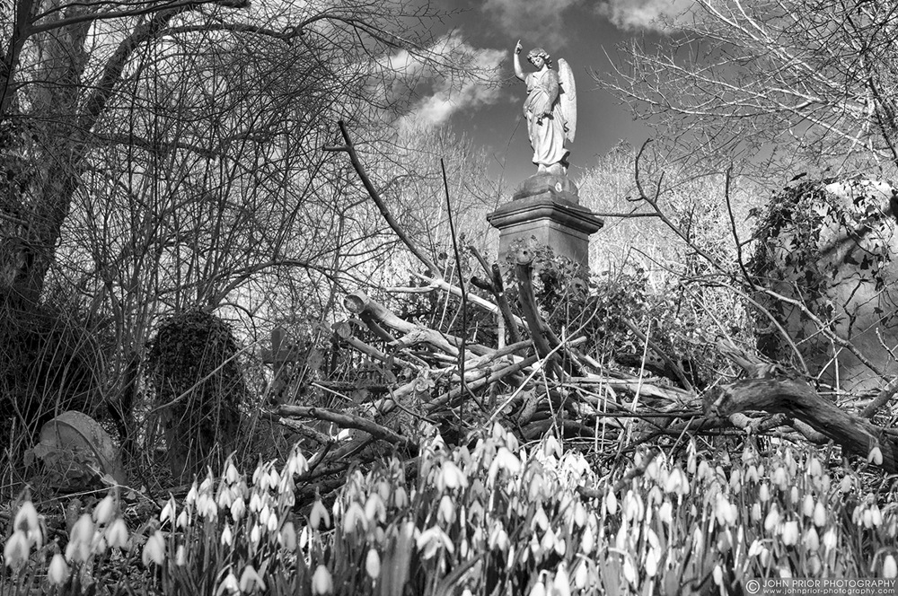 photoblog image Salvation