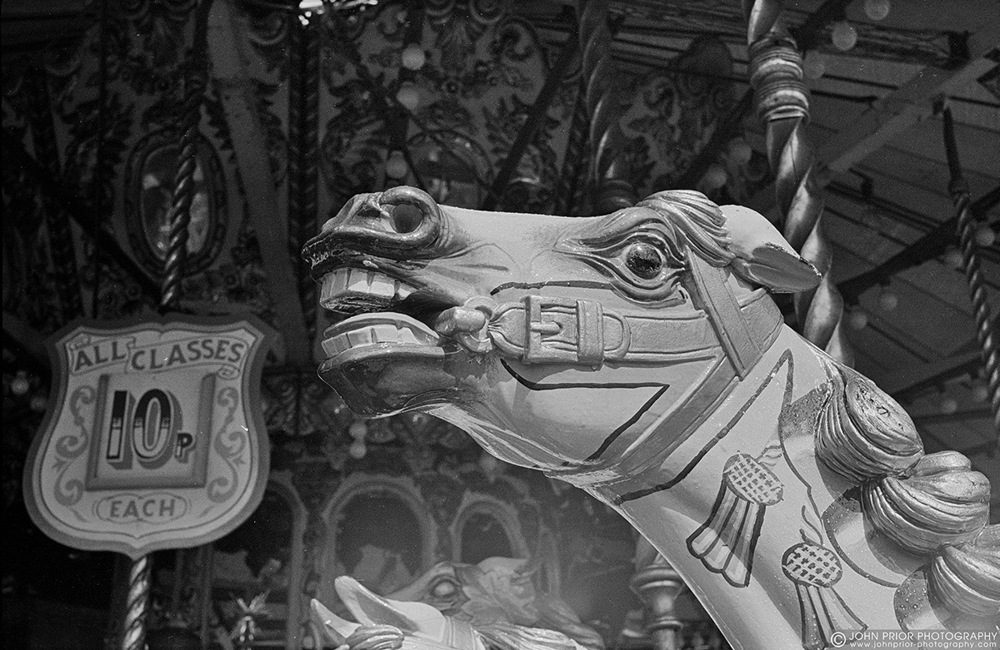 photoblog image The horse's mouth