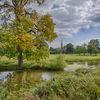 Charlecote landscape