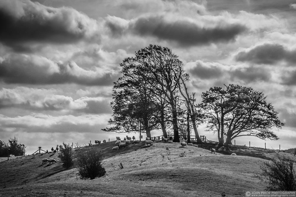 photoblog image Top of Cymbeline's Mount
