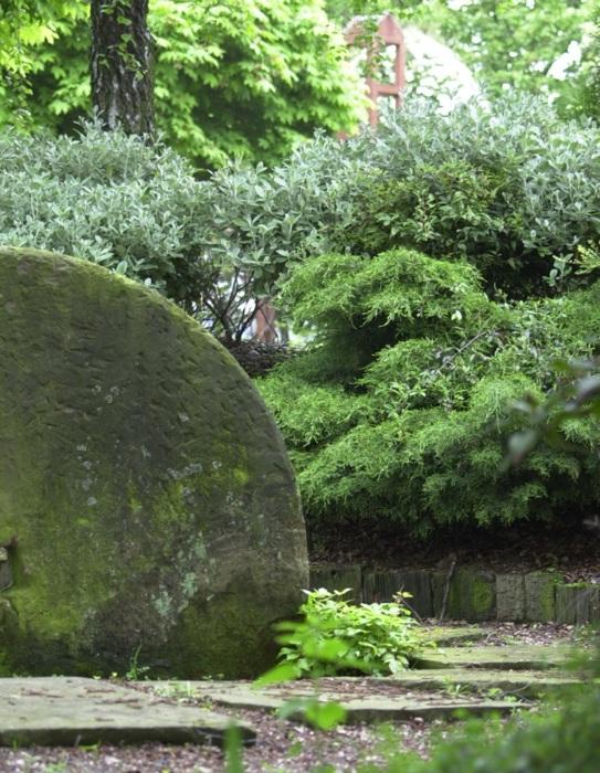 photoblog image Le jardin des plantes