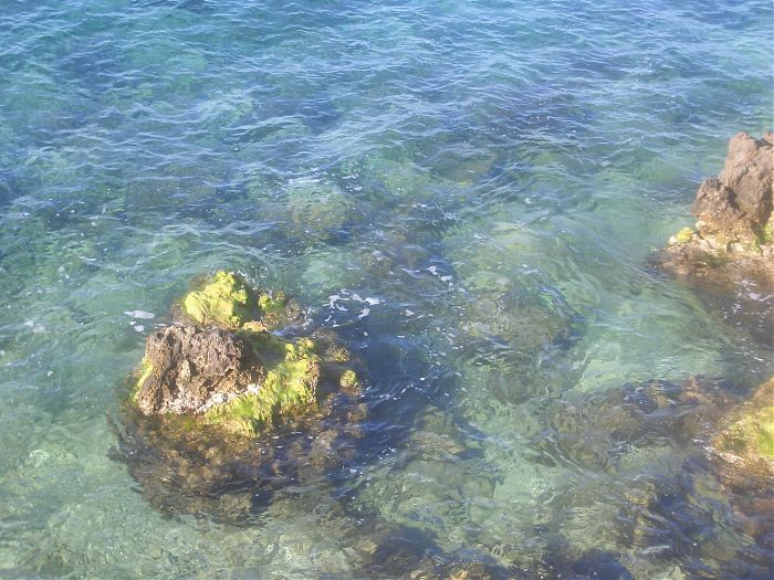 photoblog image Crystal Clear Water
