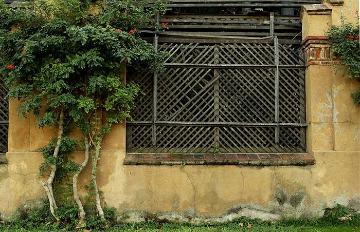 photoblog image Una ventana.