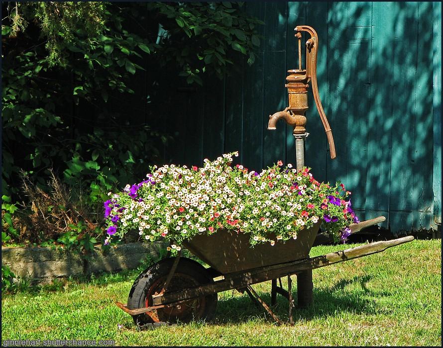 photoblog image The Water Pump