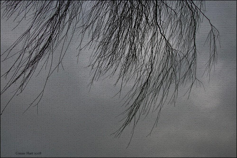 photoblog image Auntie Sue