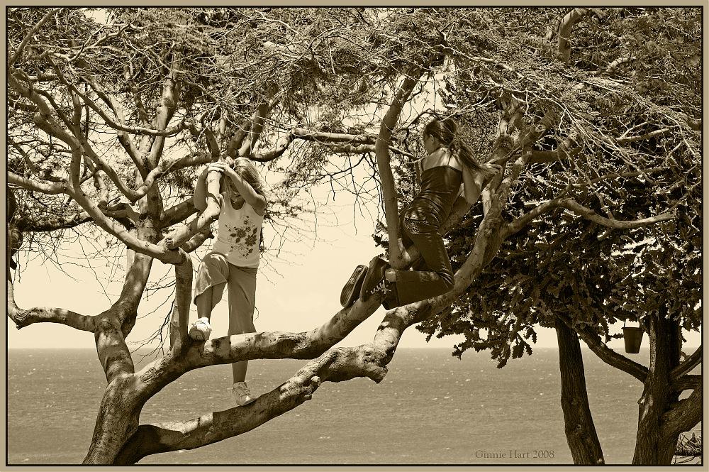 photoblog image A Dream Team