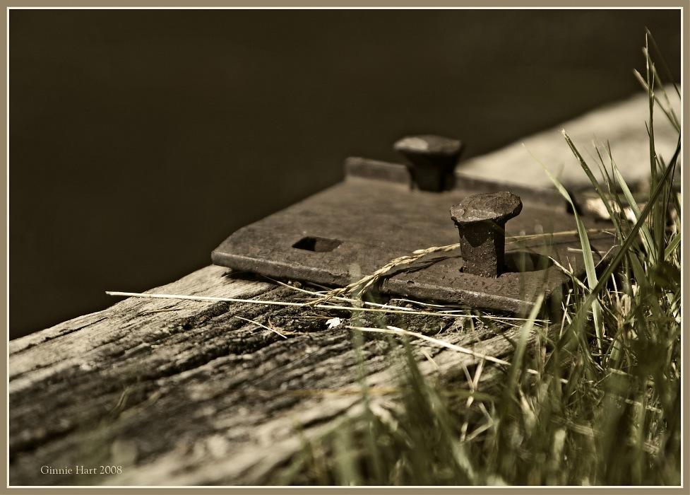 photoblog image Tied Together