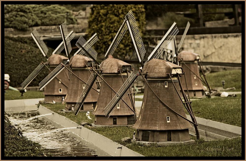 photoblog image Mini-Kinderdijk