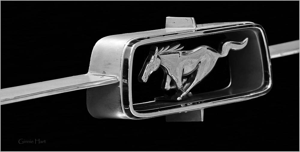 photoblog image 1967 Ford Mustang
