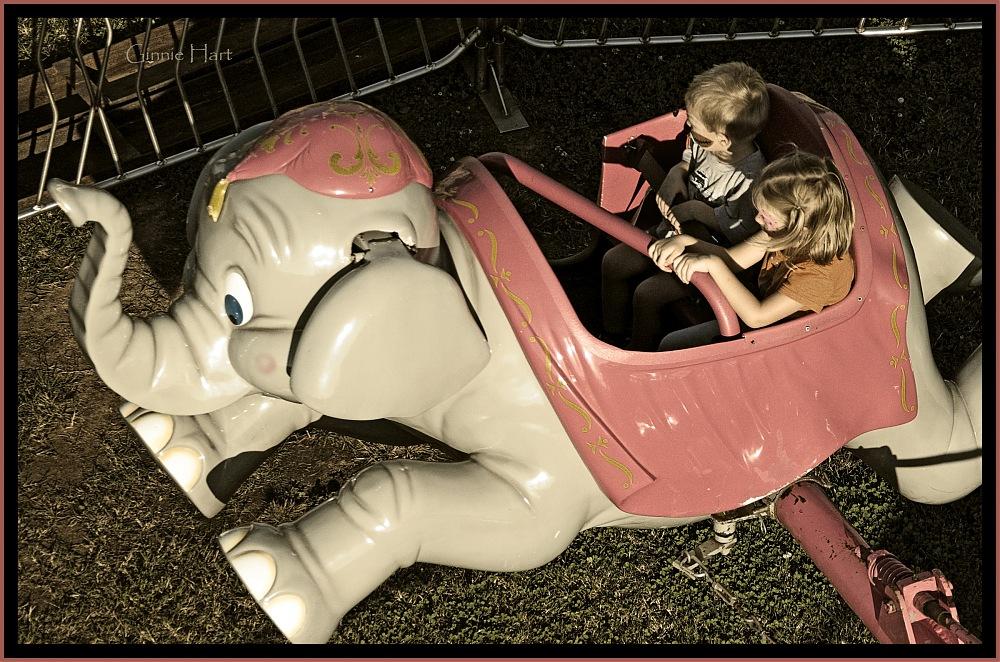 photoblog image Dumbo