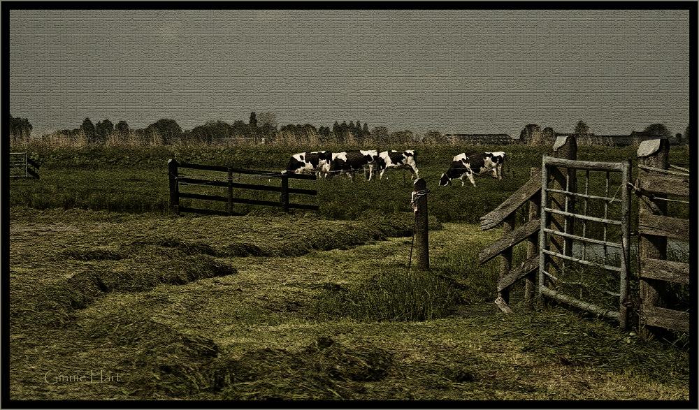 photoblog image Dutch Masters 3/3