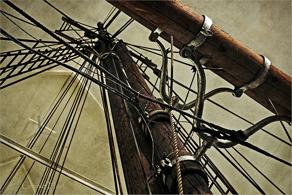 photoblog image Forward Thinking