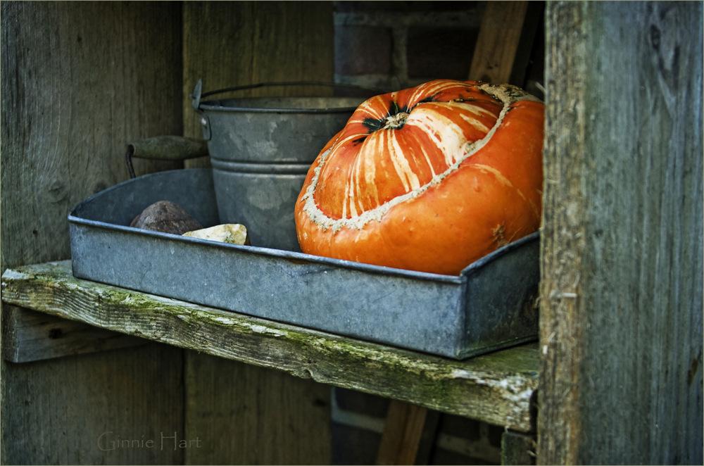 photoblog image Pumpkin Creek