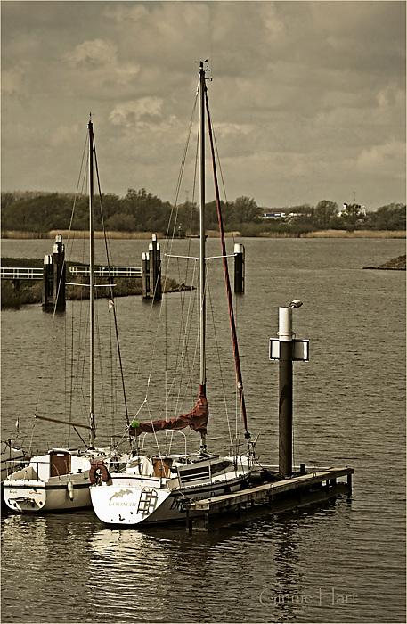 photoblog image Safe in Harbor