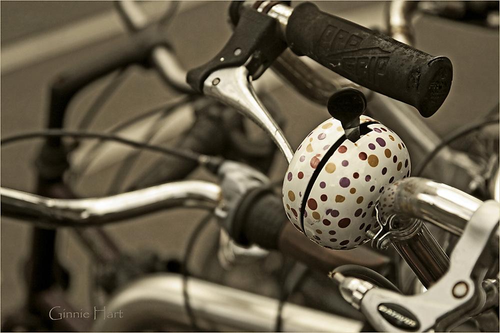 photoblog image The Bell Ringer
