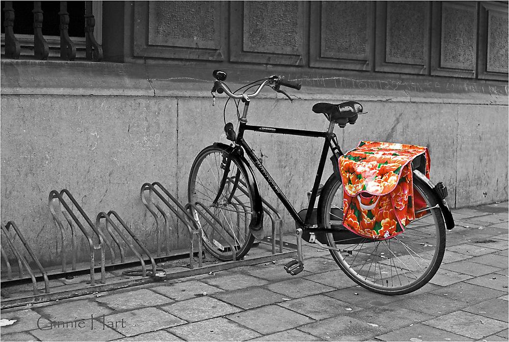 photoblog image Bikes in Antwerp:  3/3