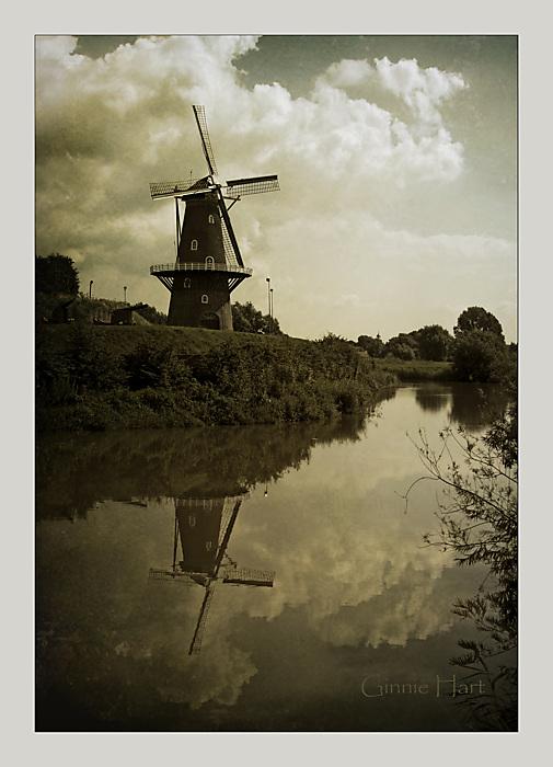 photoblog image At Half-Mast